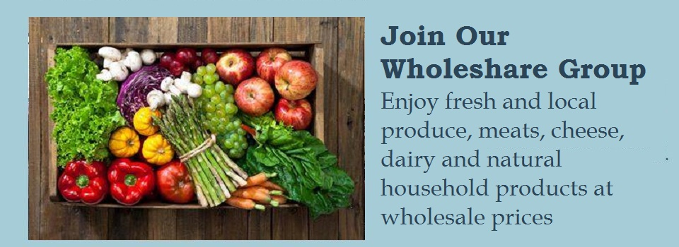 wholesharegroup